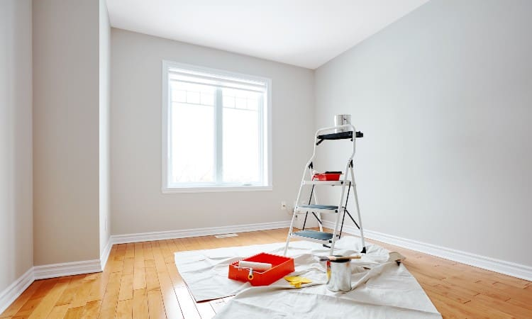 Best Paint for Walls and Ceilings